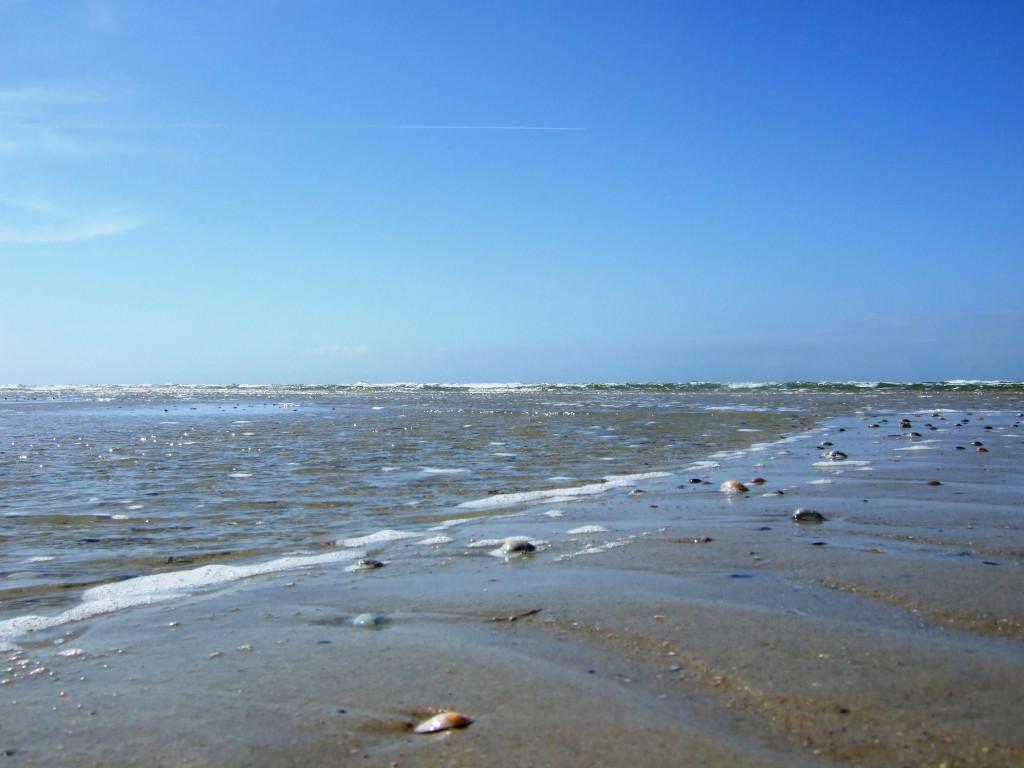Strand mit Sand und Steinen