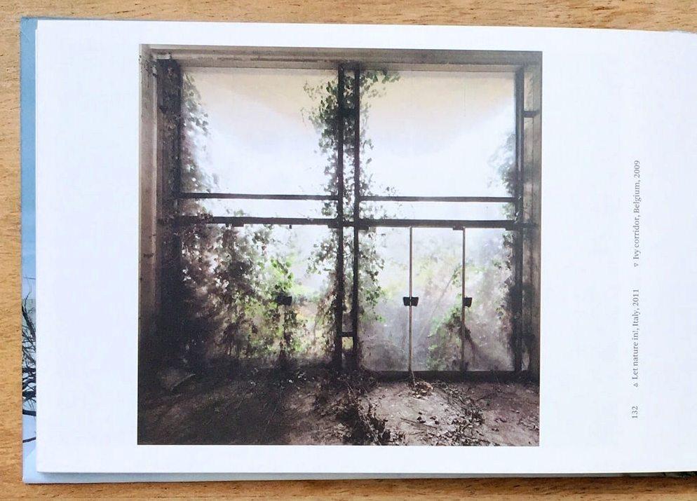 Abandoned Places Efeu Fenster