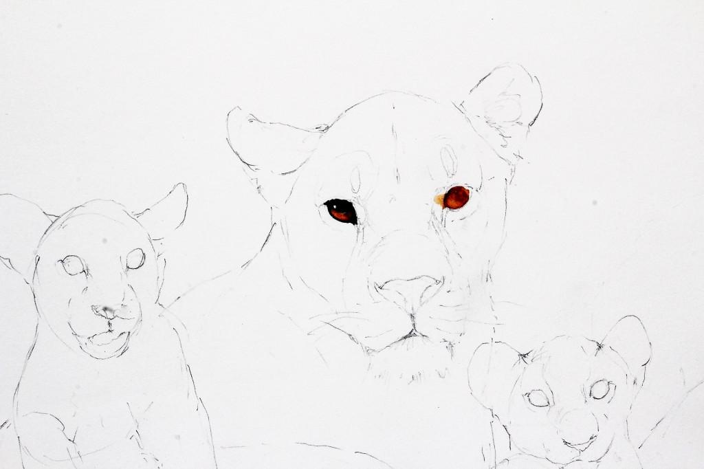 Bodo Meier, Löwin mit Jungen Schritt 2