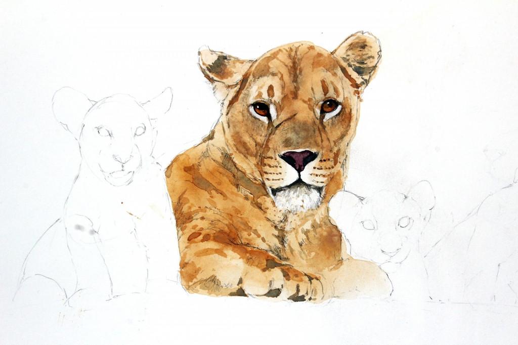 Bodo Meier, Löwin mit Jungen Schritt 6