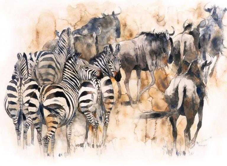 Bodo Meier, Migration Gnus und Zebras