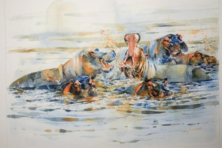 Bodo Meier, Flusspferde am Chobe, Botswana,