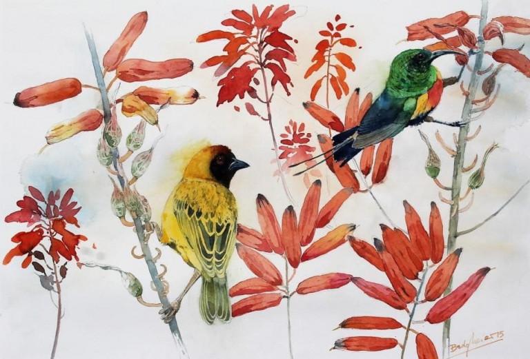 Bodo Meier, Vogel- und Pflanzenstudie