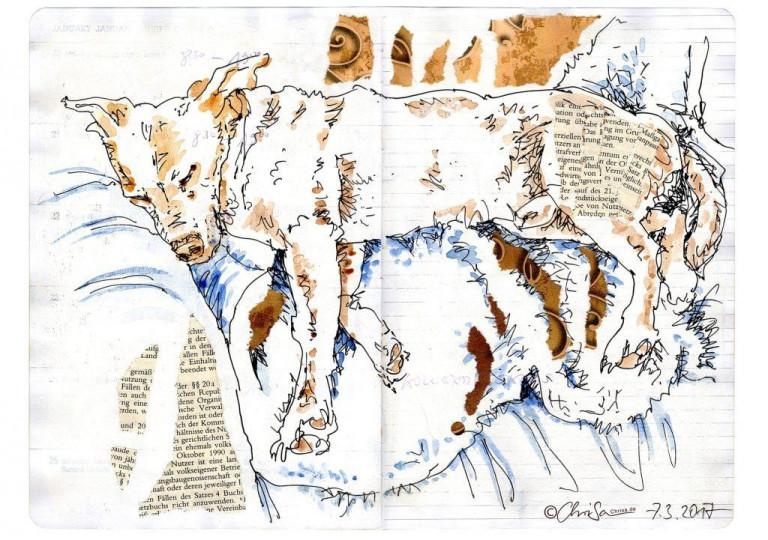 Bandit-hunde-skizze-chrisa-hans-christian-sanladerer