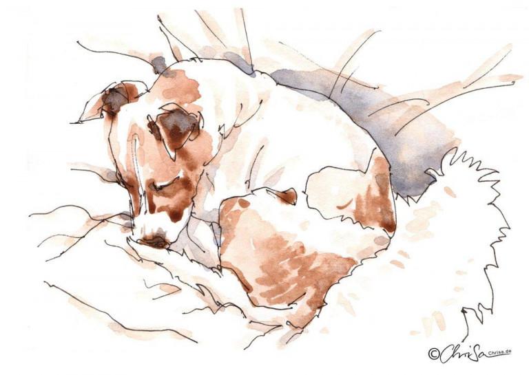 Mailo-hunde-skizze-chrisa-hans-christian-sanladerer
